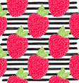 Raspberry hand drawn sketch striped Seamless vector image