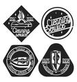 Vintage cleaning service emblems vector image