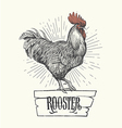 Rooster hand drawn Symbol of 2017 vector image