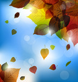 Autumn leafs background- fall with back ligh vector image vector image