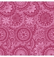 Floral lace seamless pattern vector image
