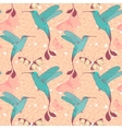 Bright pattern with colibri birds and butterflies vector image