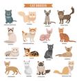 Cat breed set vector image