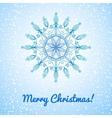 Beautiful large snowflake vector image