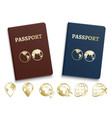 passports international id and golden navigation vector image
