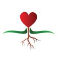 Growing heart vector image