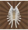Insect anatomy Sticker Scutigera coleoptrata vector image