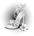 Weddings white shoes vector image