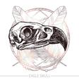 Eagle Skull Hand Drawn vector image