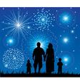 Family Fireworks vector image