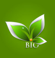 Bio green leaves abstract background vector image