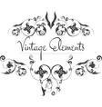Hand Drawn Vintage Flourishes vector image