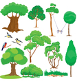 Tree set vector image