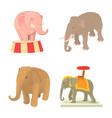 elephant icon set cartoon style vector image