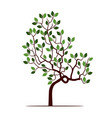 color tree with leafs vector image
