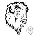 stylized bison head vector image vector image