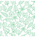 Emerald green leaves seamless pattern vector image
