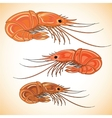 Three prepared shrimps on colorful background vector image
