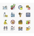 Collection of Icons on Theme Diet vector image