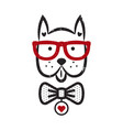 cute gentleman dog hipster tshirt design vector image