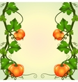 frame of pumpkins vector image