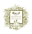 olive oil sketch poster vector image