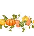 Seamless border with pumpkins Decorative ornament vector image