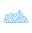 A view of a coral reef vector image vector image