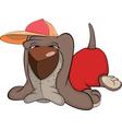 Basset Hound Cartoon vector image