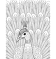Peacock Coloring for adults vector image