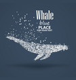 Blue whale particle divergent composition vector image