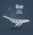 blue whale particle divergent composition vector image