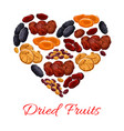 heart of dried fruits snacks vector image