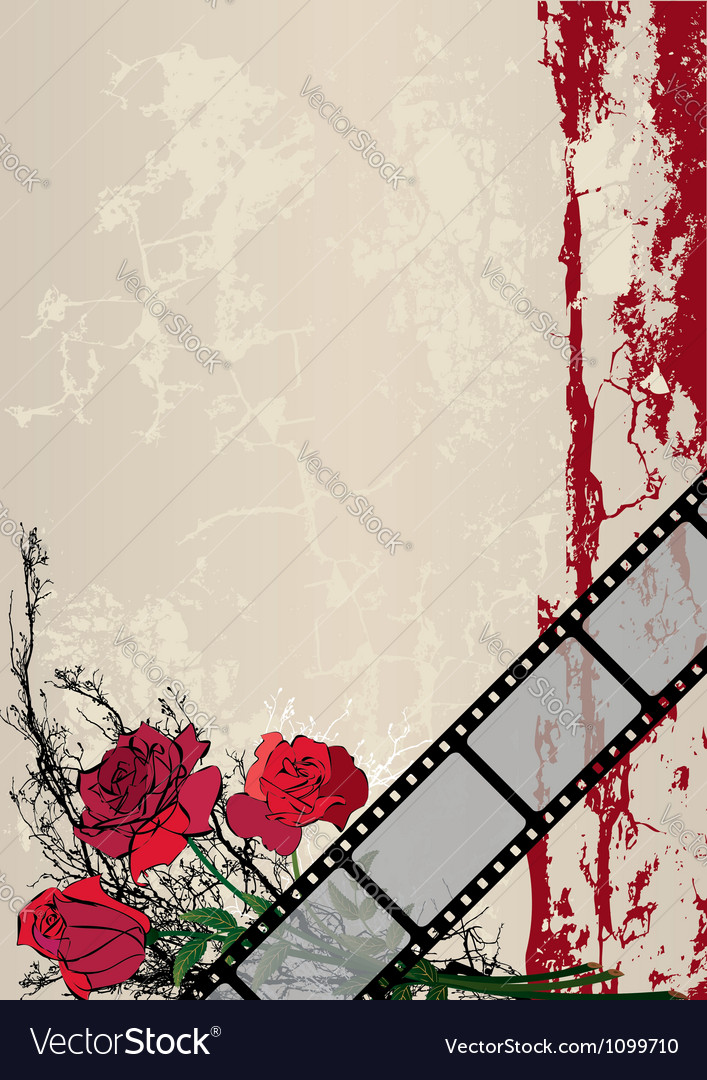 Roses and film strip vector