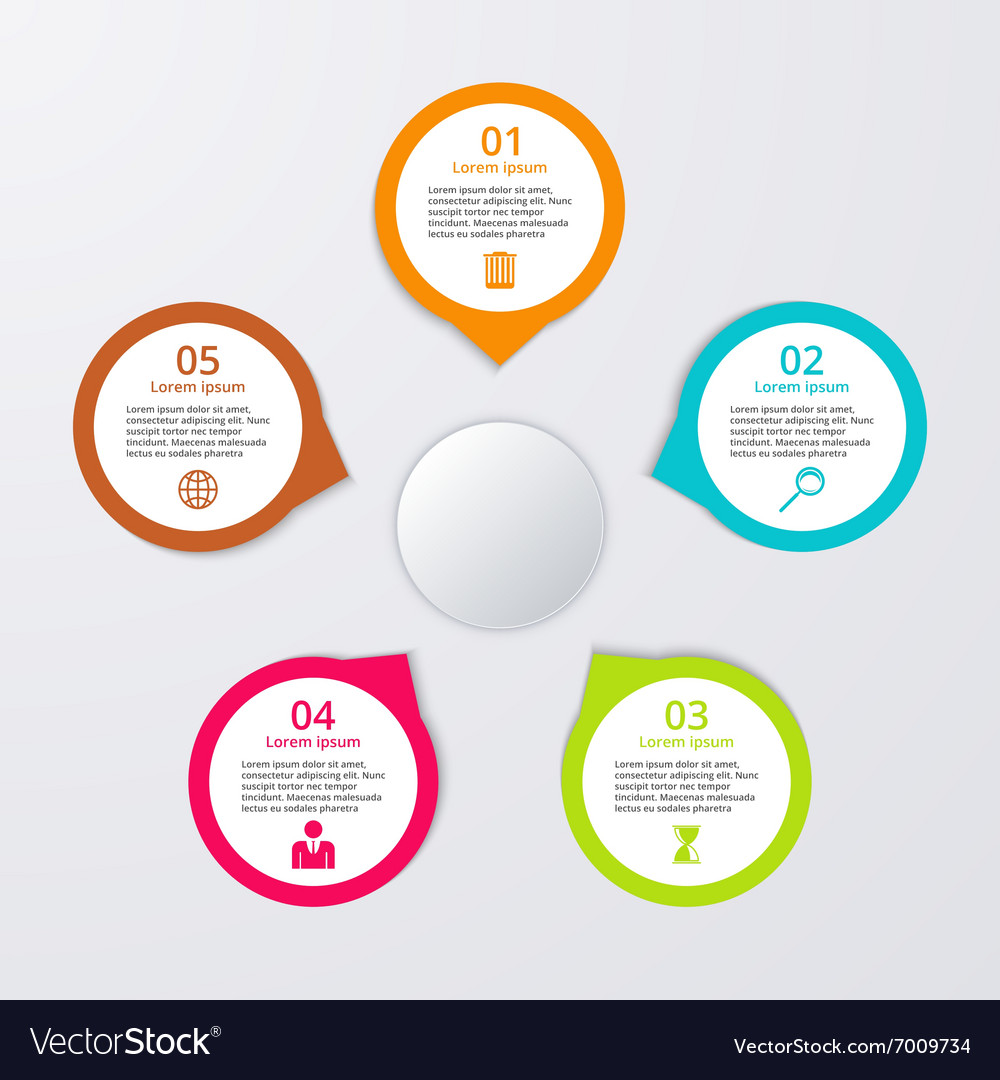 Infographic five options vector