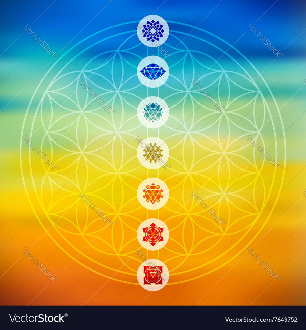 Sacred geometry with chakra icons colorful vector