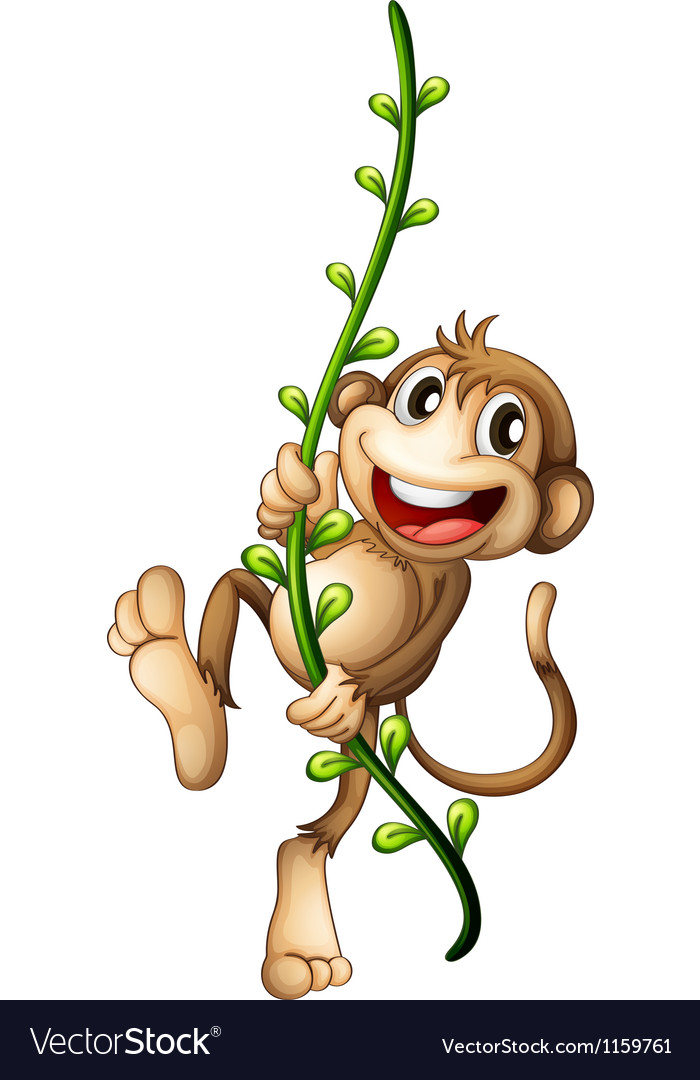 A monkey hanging on a vine vector
