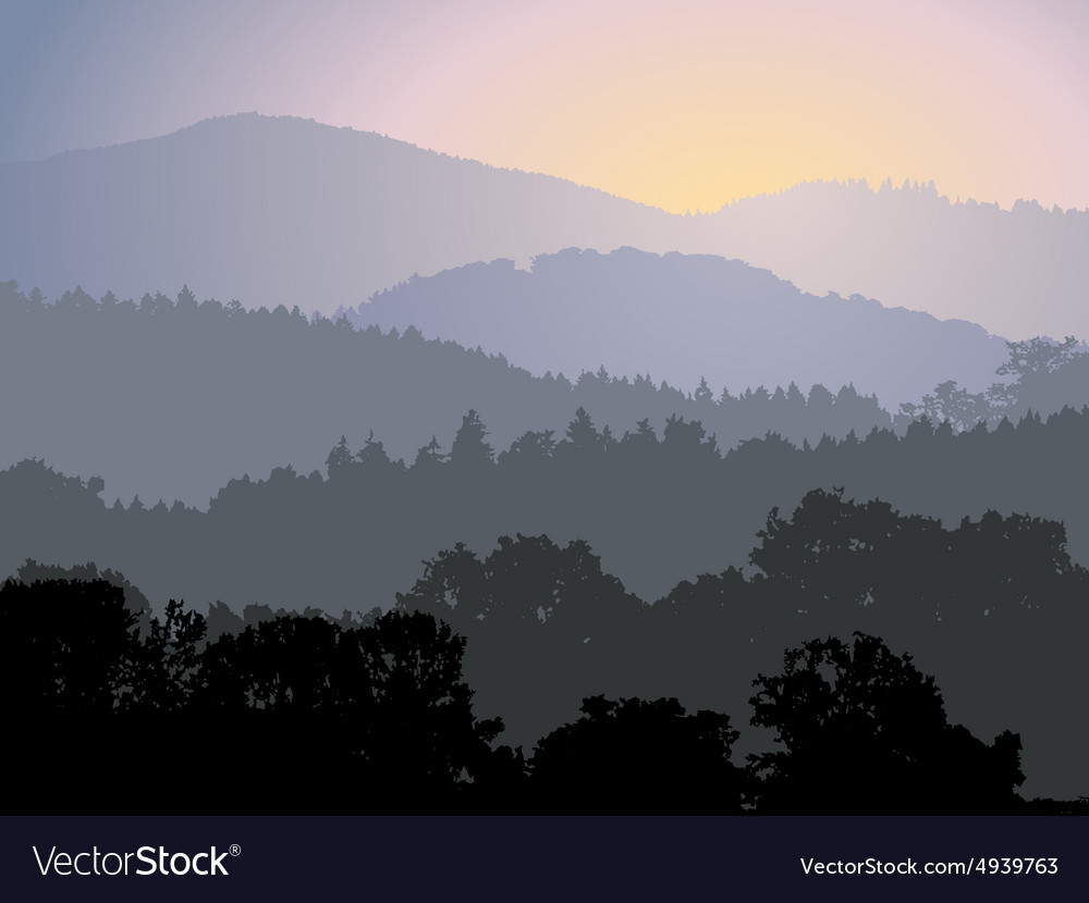 Evening panorama vector