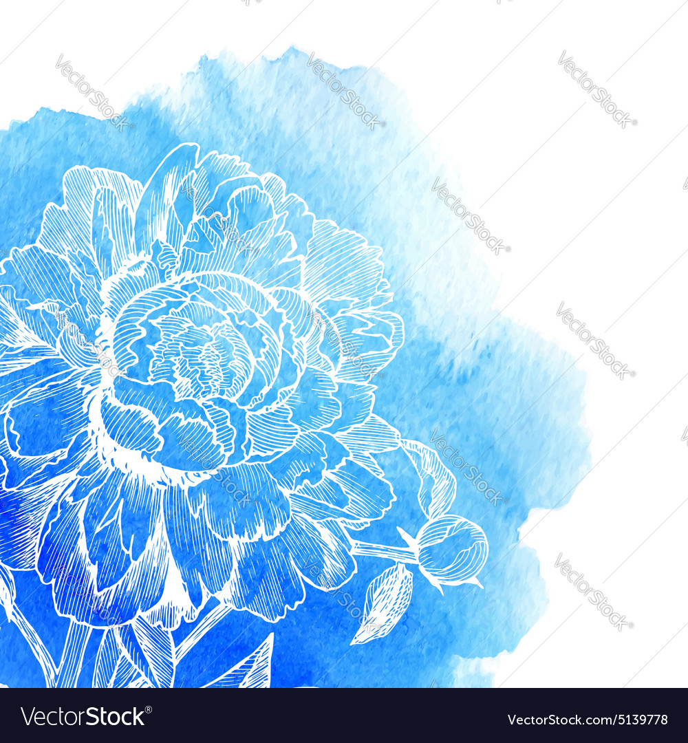 Ink drawn white peony at blue watercolor vector