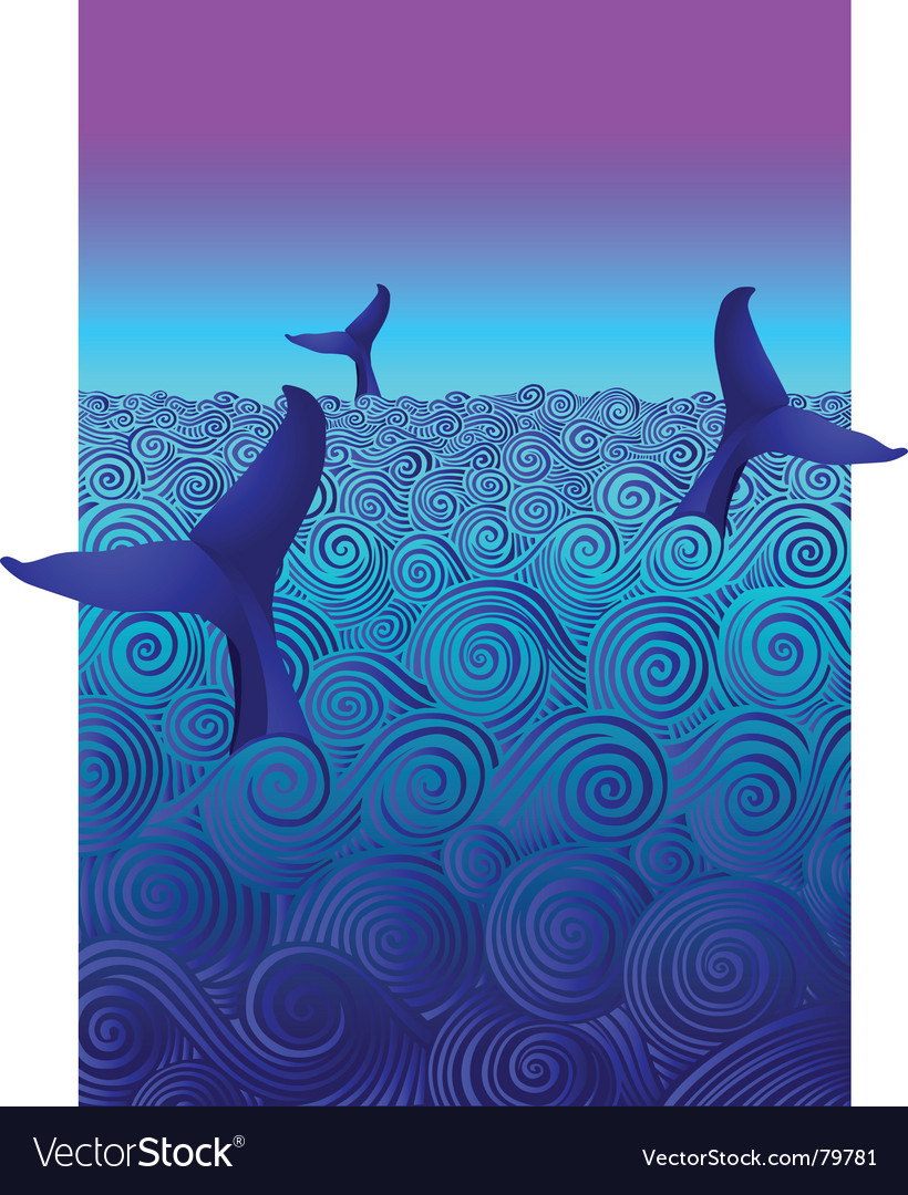 Diving whales vector