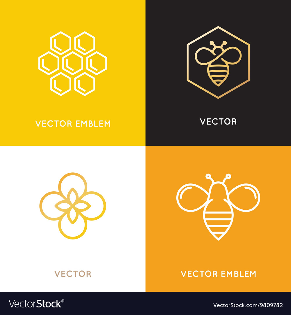 Logo and packaging design templates in trendy vector
