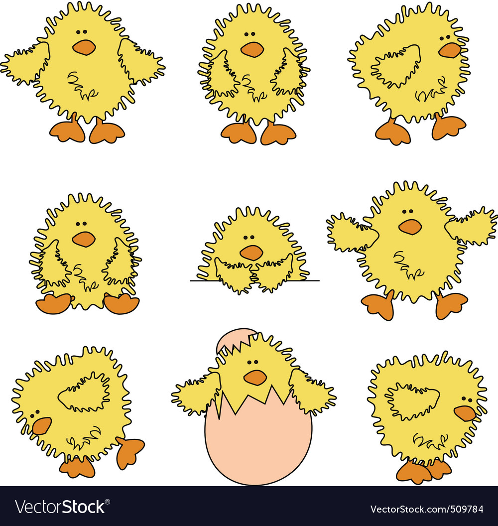 Cute easter chick vector