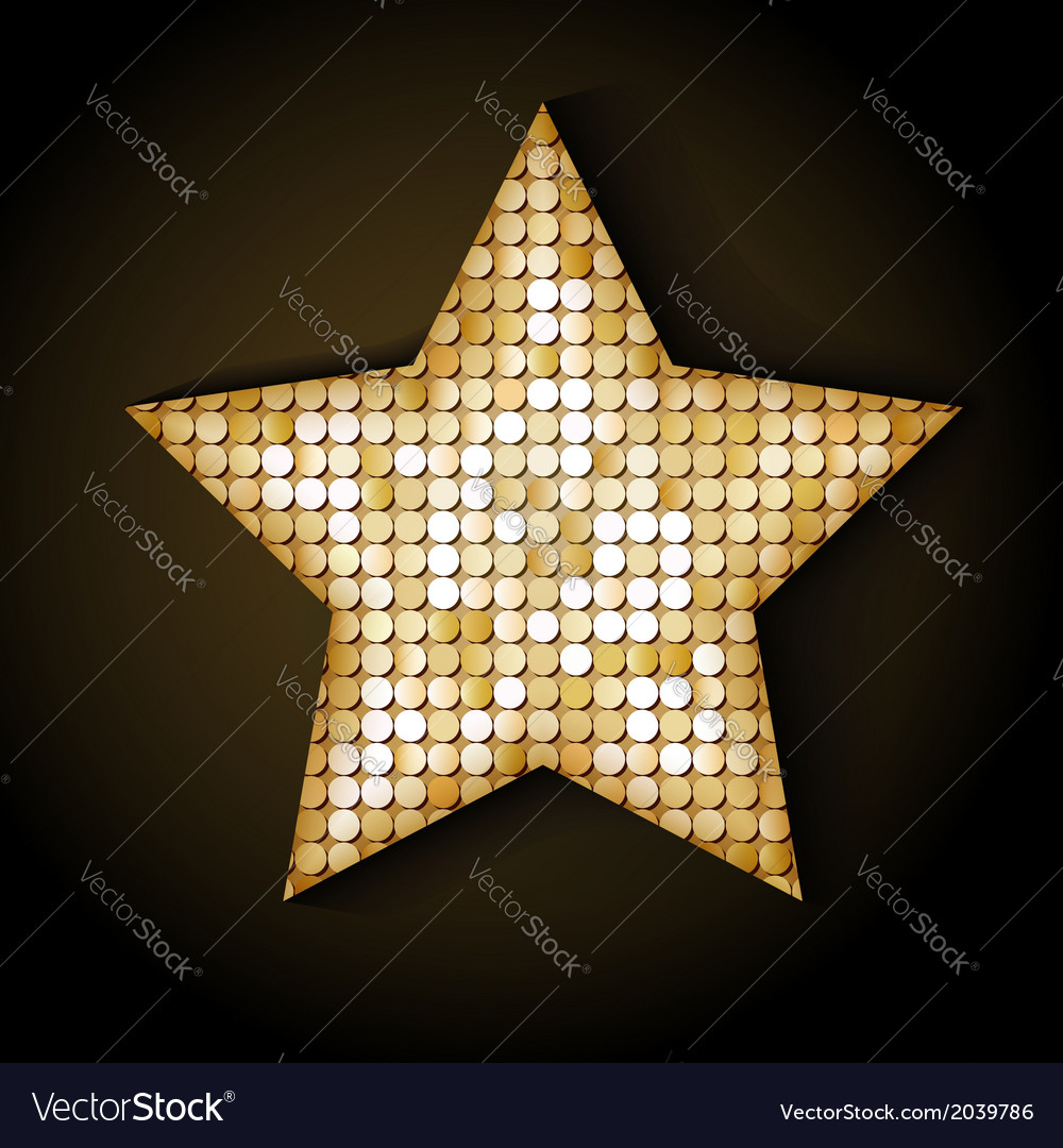 Shiny sequins star eps 10 vector