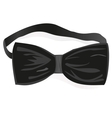 black bow-tie vector image
