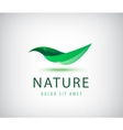green leaf nature organic icon vector image