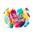 Stereo Summer on Spot Background vector image