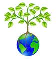 world globe tree vector image vector image