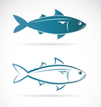 image of an mackerel vector image vector image