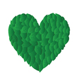 Heart from leafs vector image vector image
