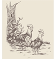rooster hen and chicken at the farm vector image